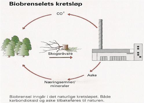 Biobrenselets kretsløp